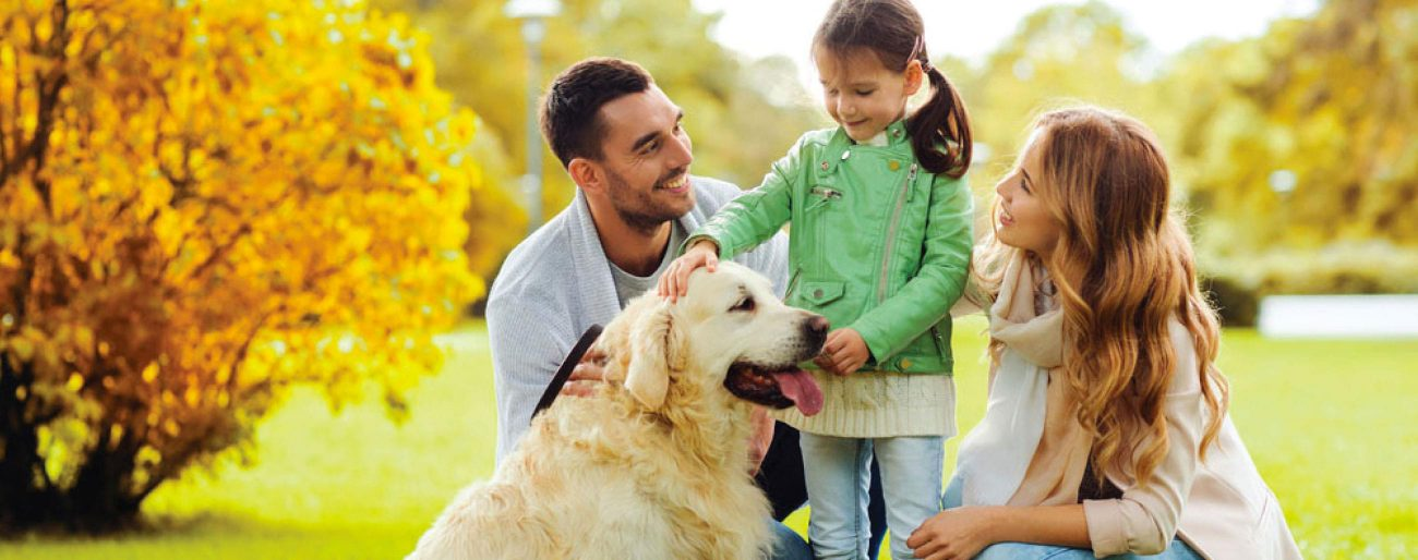 mom, dad, and little girl petting dog